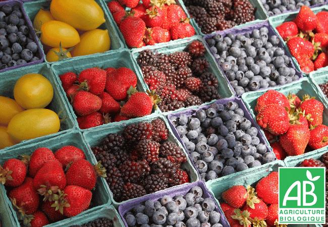 importance alimentation bio