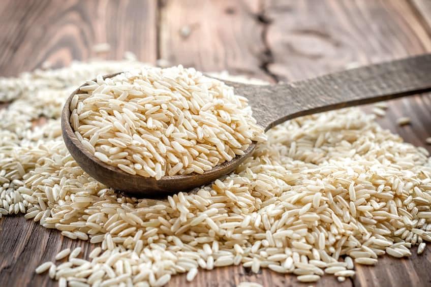 proteines de riz bio